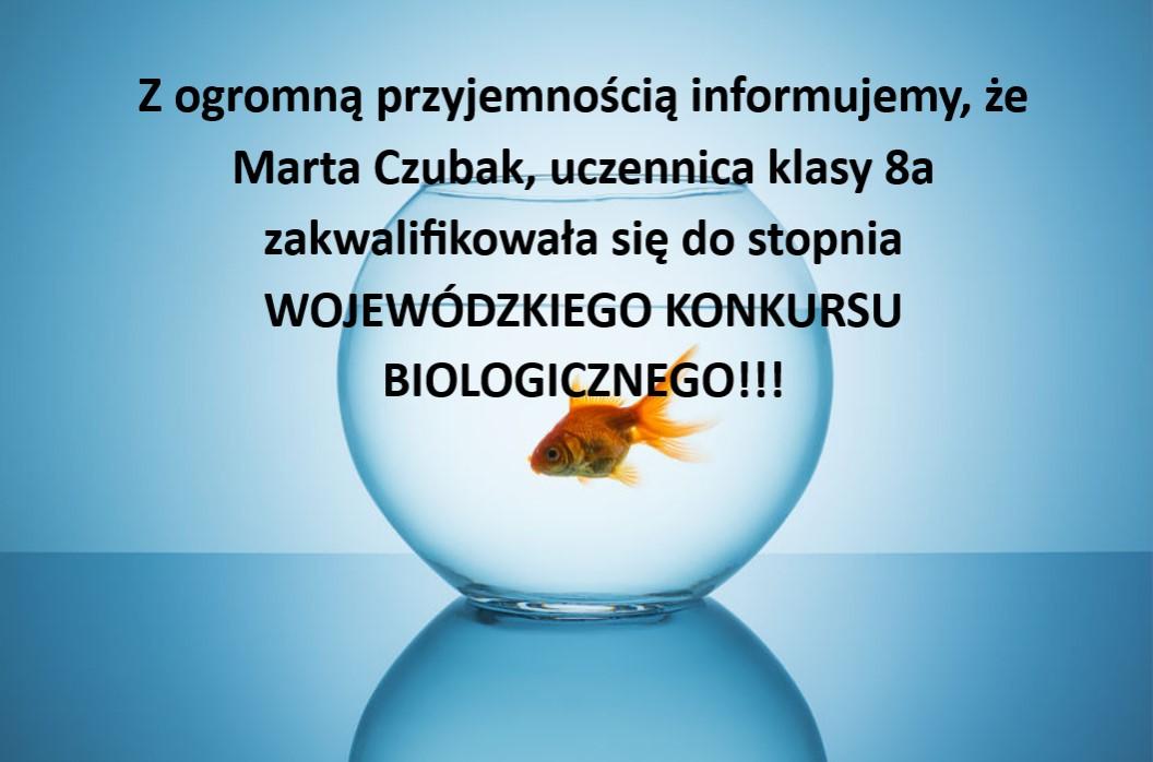 Wojewódzki konkurs biologiczny – etap rejonowy